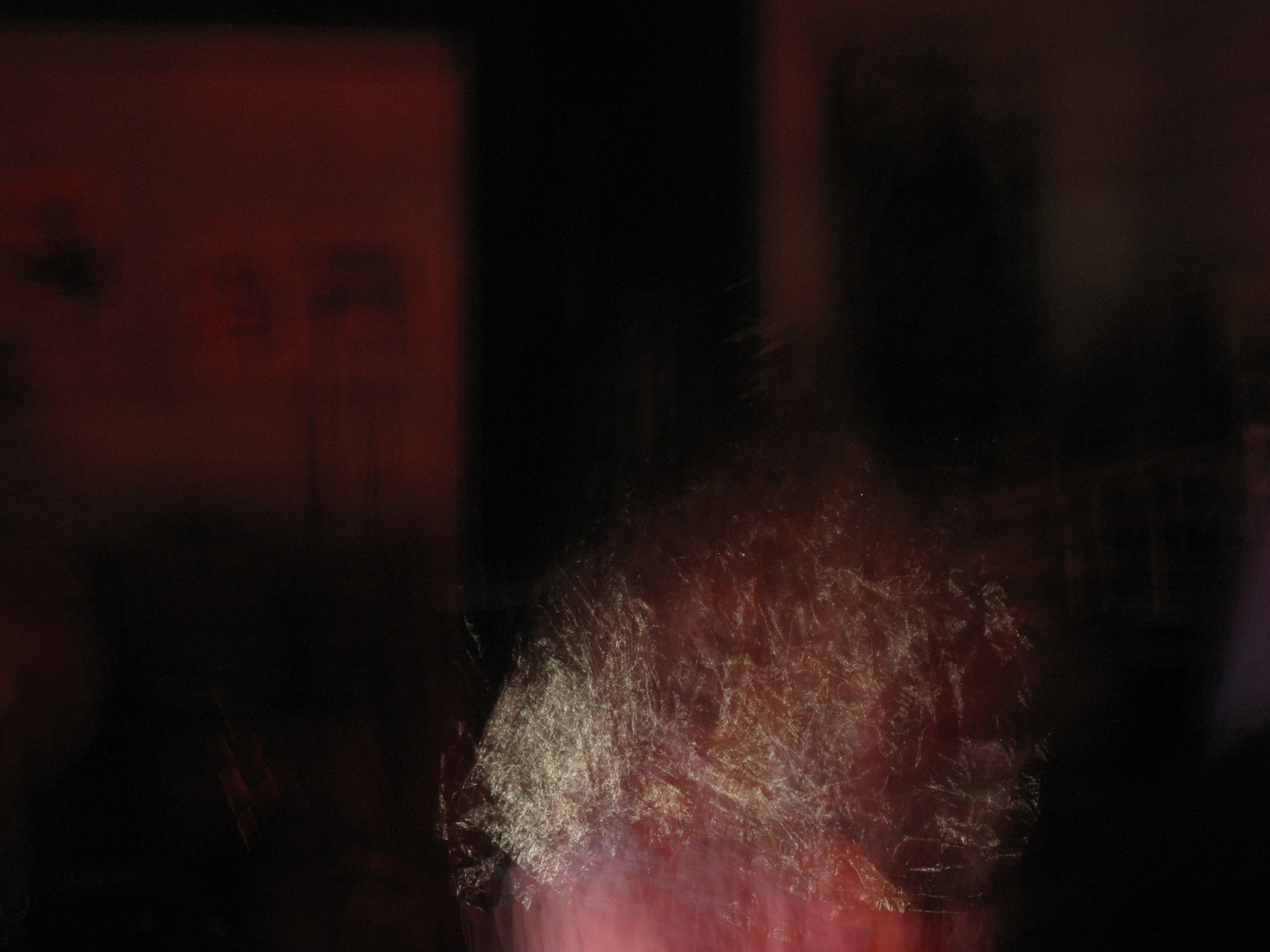 The Three Brained Robot Greensboro 8/30 Maya Gallery