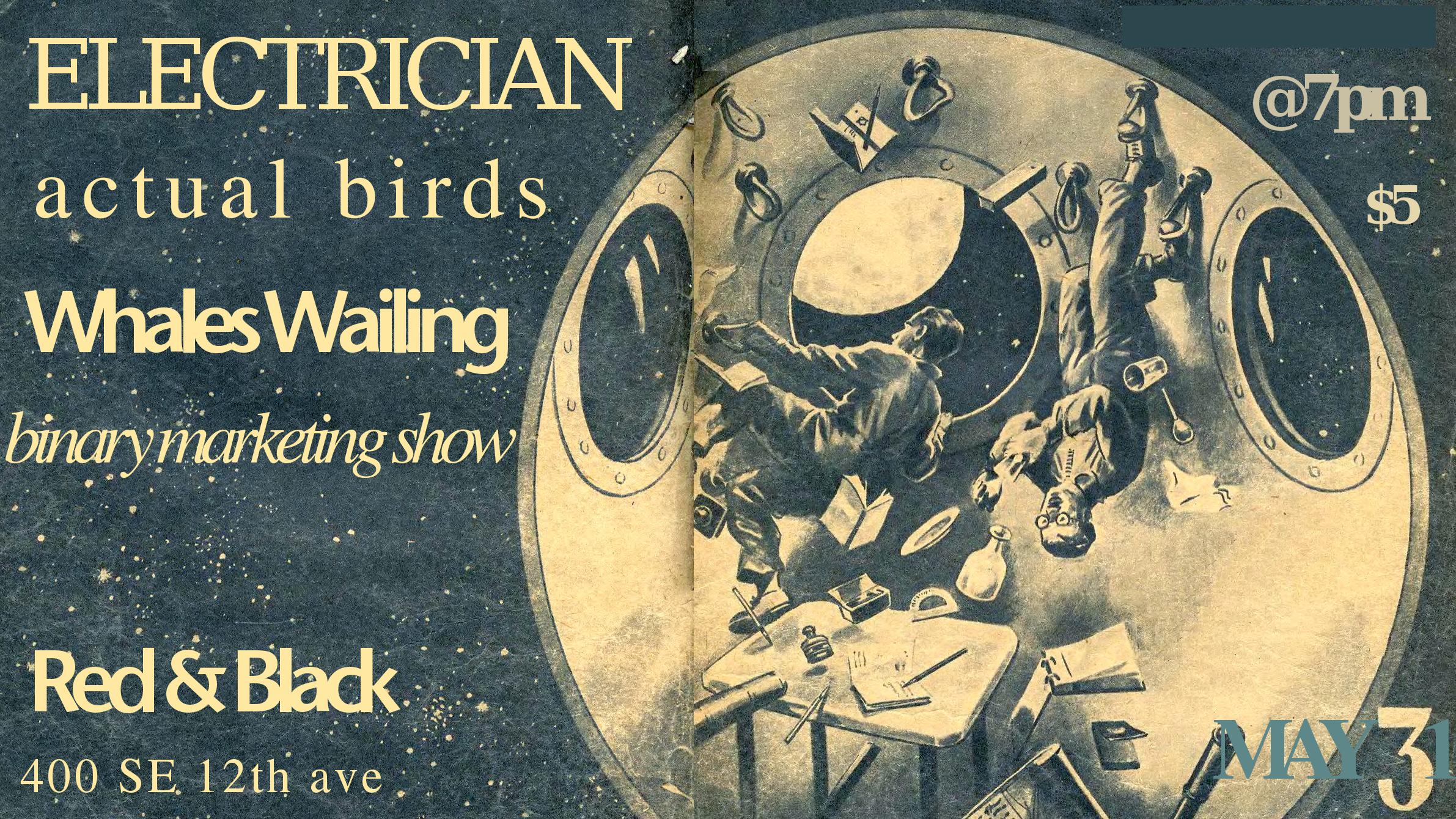 tbms-electrcian-whaleswailing-actualbirds